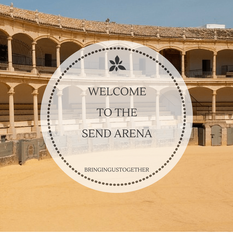 Welcome to the SEND Arena