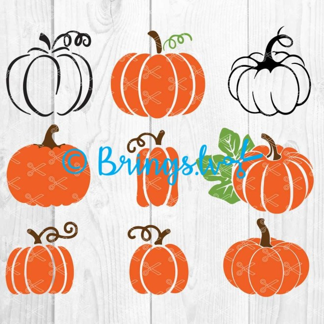 Pumpkin SVG Bundle