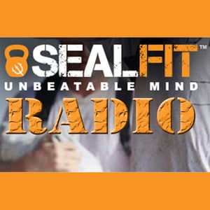 medium_sealfit-radio-sealfit-is-an-integrated-training-program-that-covers-training-of-the-body-mind-and-spirit-1448028297
