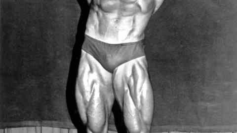 Picture of Arnold Schwarzenegger