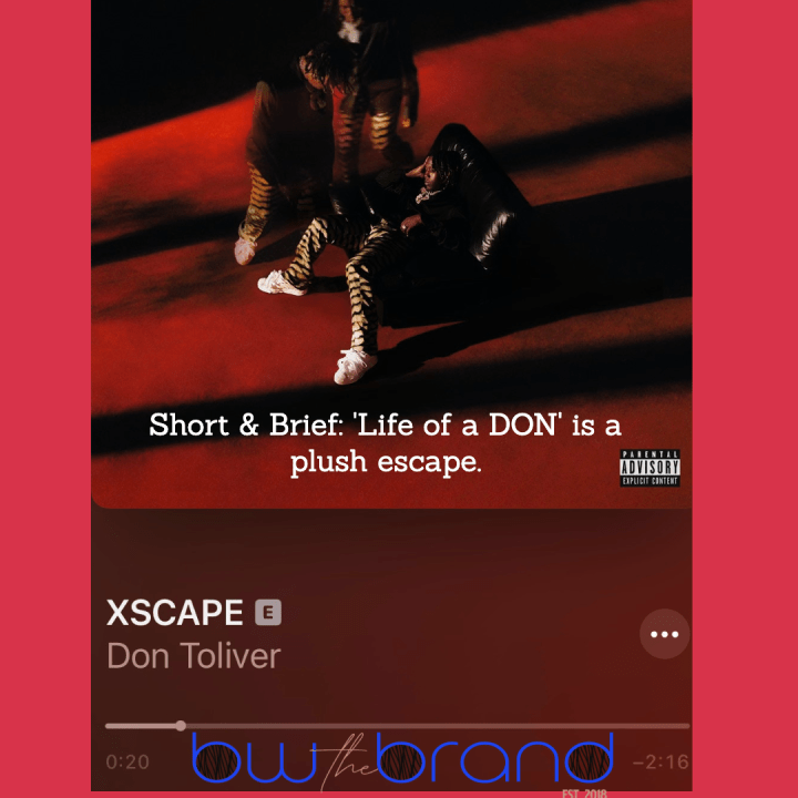 Short & Brief: Life of a DON is a plush escape.