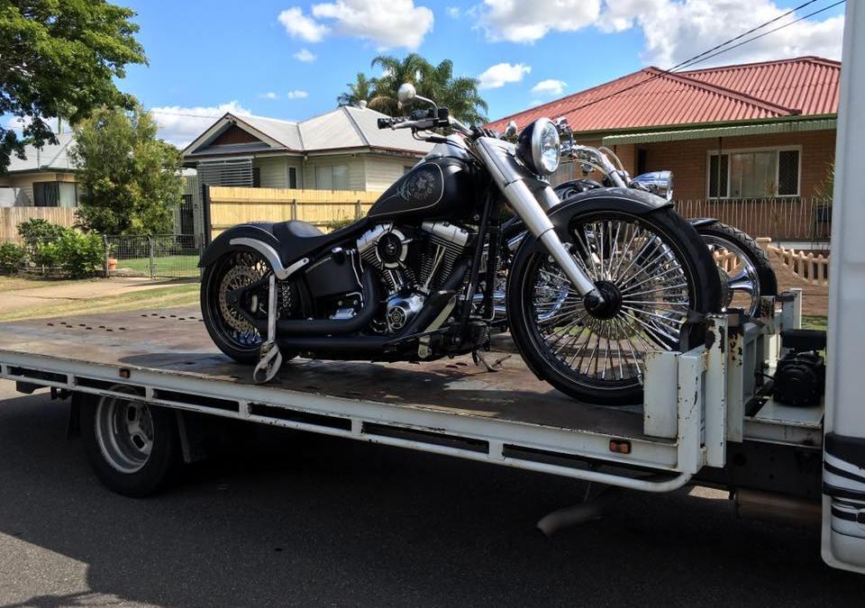2 Custom Harleys