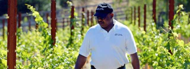 © Atlanta Black Star | Black winemakers like Black Coyote Chateau's Ernie Bates are the exception rather than the rule.
