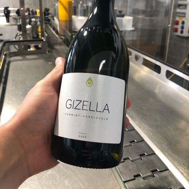 From Tokaj, the Gizella Pince Gizella 2019, a blend of 65% Furmint and 35% Hárslevelű is an off-dry crowd pleaser