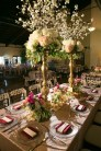 photos-of-wedding-receptions-at-briscoe-manor-050