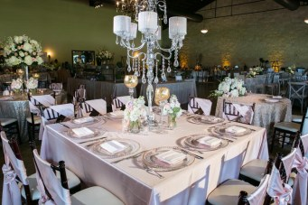 photos-of-wedding-receptions-at-briscoe-manor-060