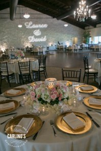 photos-of-wedding-receptions-at-briscoe-manor-089