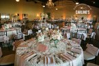 photos-of-wedding-receptions-at-briscoe-manor-091