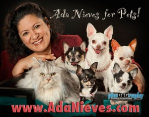 Ada Nieves For Dogs