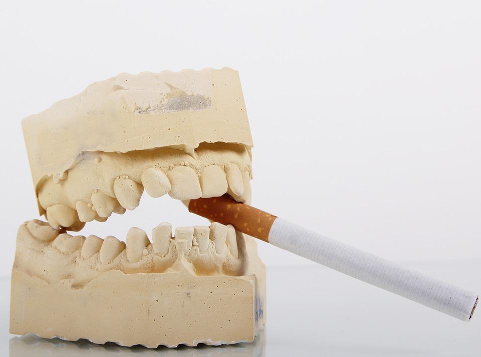 A teeth model biting a cigarette - Mississauga Dentist - Bristol Dental