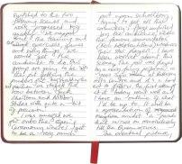 Roy-Diary-pg7