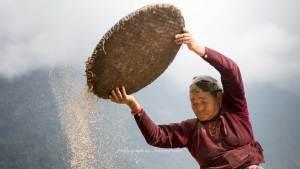 nepalese farmer