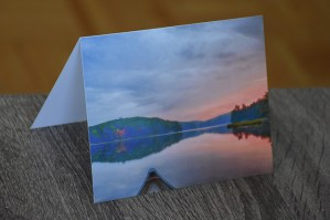 morning canoe greeting card by BritHikesOntario