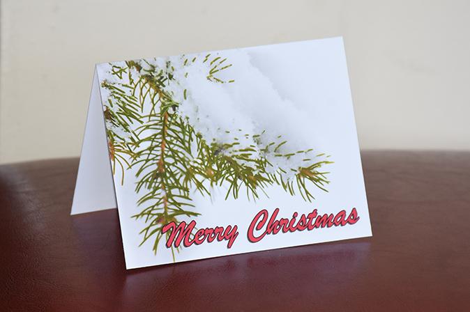 Merry Christas Pine Tree Greeting Card by Brithikesontario