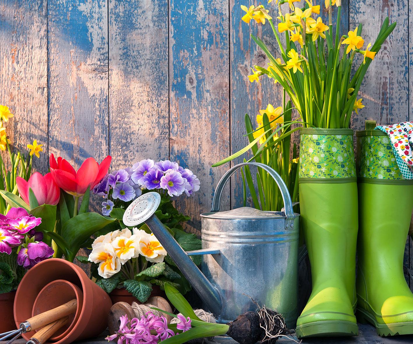 British Garden Centres Gardening Dept