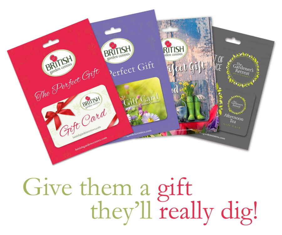 Gift Cards Buy Online