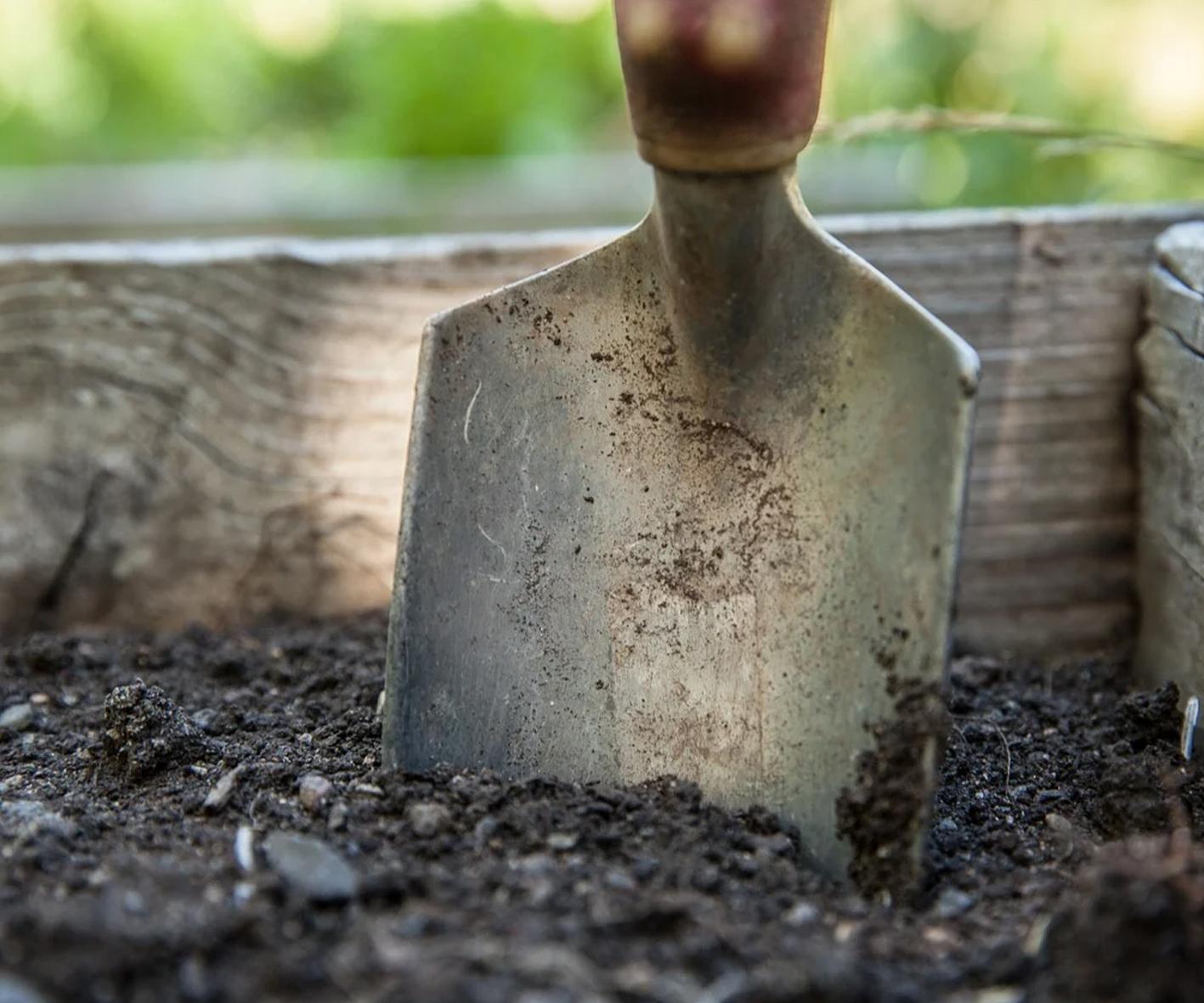 Preparing soil - Your garden in February
