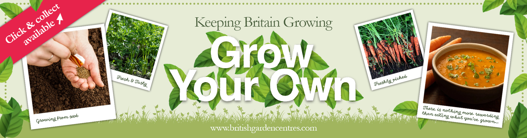 Grow your own - Carrots