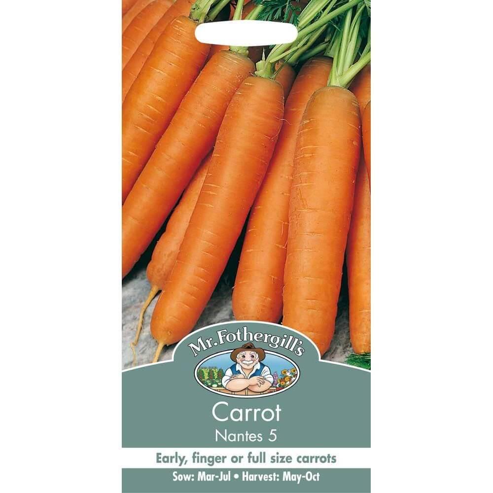 Carrot Nantes 5 MF Veg Seeds