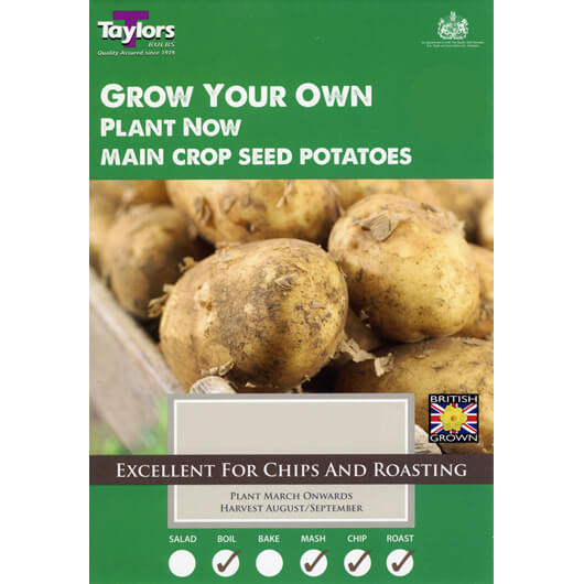 Main Crop Seed Potatoes - Maris Pipers
