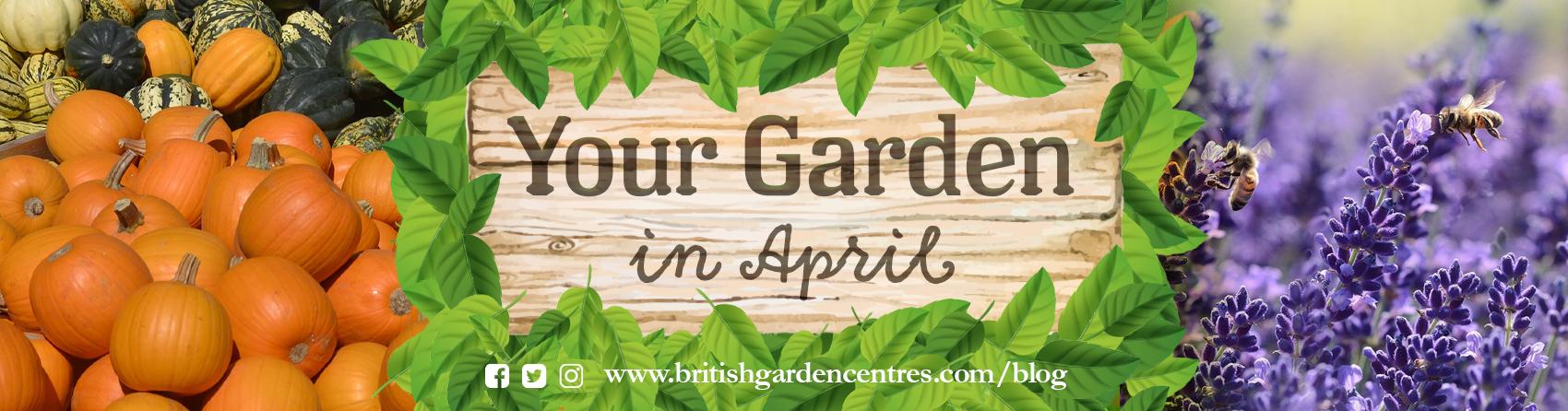 Your garden in - April