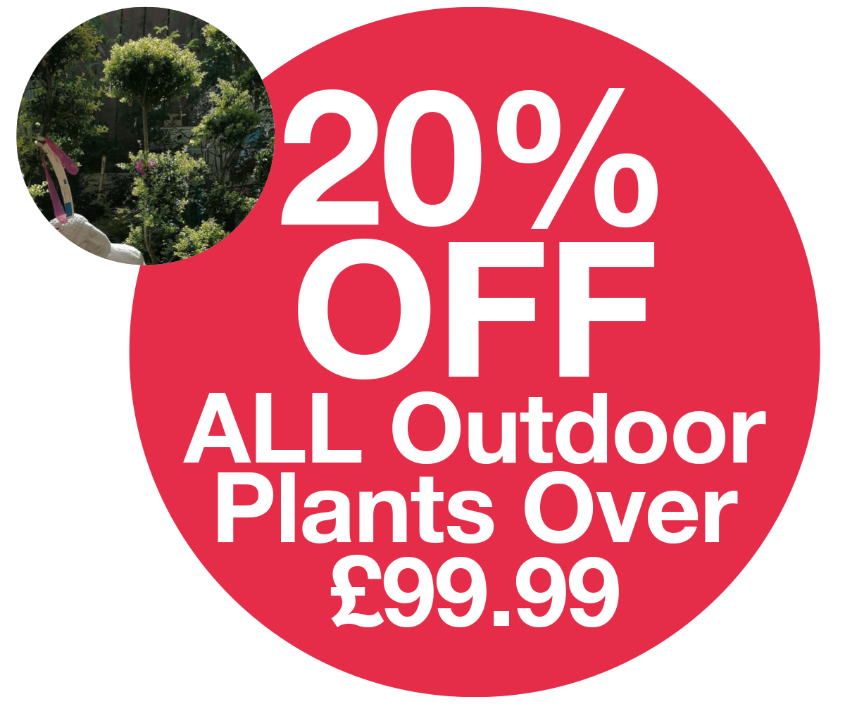 Family Card - 20% off outdoor plants over £99.99