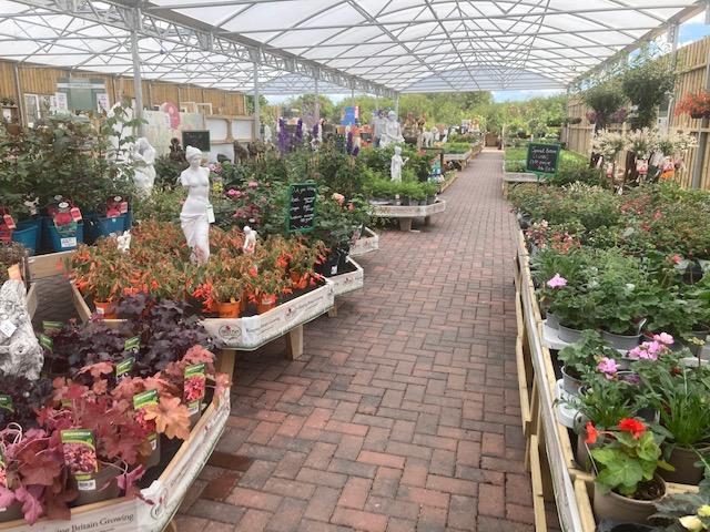 Newton Regis Garden Centre
