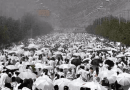 What is Ashura?
