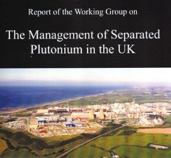 Management of separated plutonium in UK