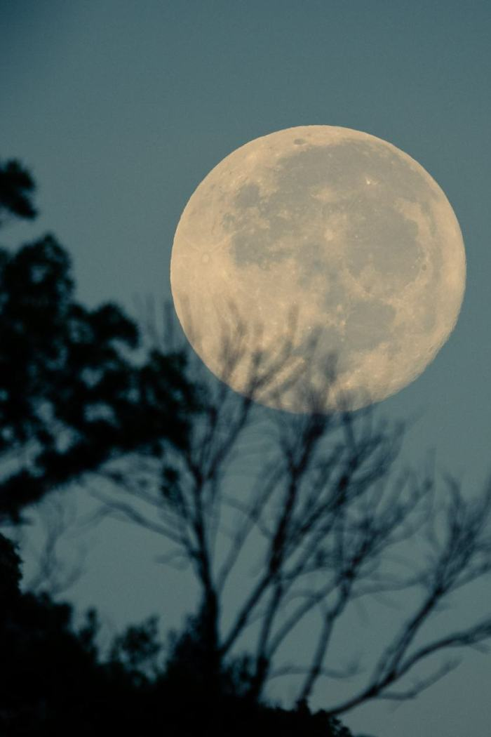 How to Manifest Your Dream Life During October's Full Moon in Aries