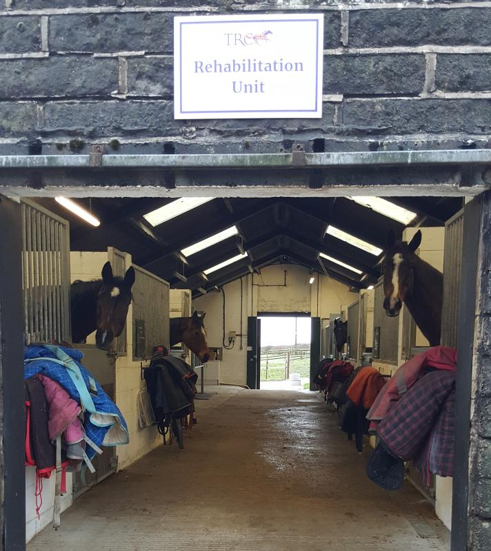 Racehorse rehabilitation unit