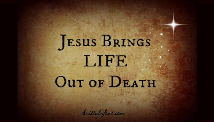 Jesus Brings Life Out of Death
