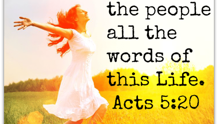 Speak All the Words of this Life…