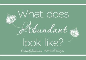 Write31Days What does Abundant look like
