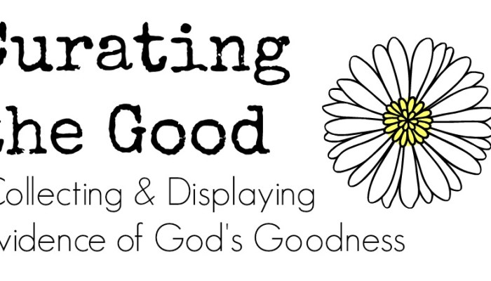 The Practice of Curating the Good