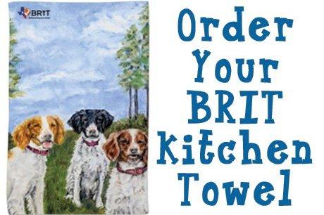 BRIT Brittany Kitchen Towels