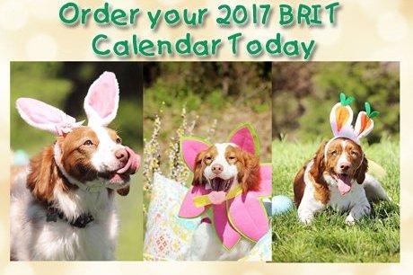 2017 BRIT Calendar