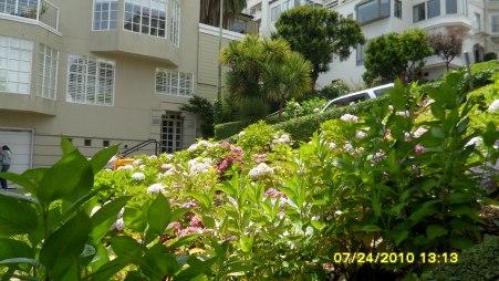 flowers on Lombard Street