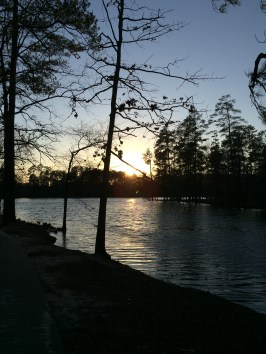 Harbison lake in the evening
