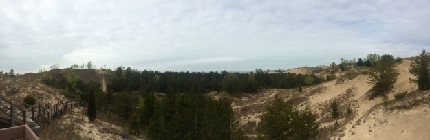 view from the top of the dune!