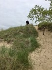 me standing on top of one of the smaller dunes
