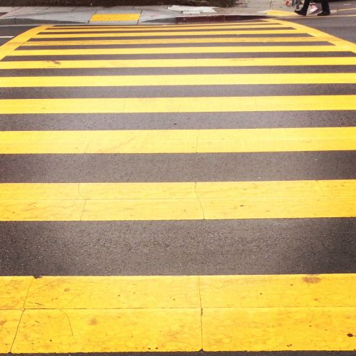 yellow stripe path