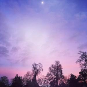 pink skies and moonrise by Britt Bravo