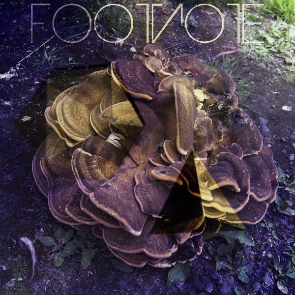 Footnote Music Track Cover