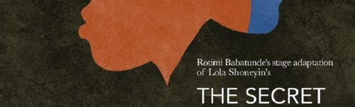 lola shoneyin's novel