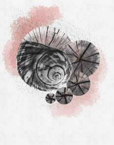 watercolor_0006_seaspaceprints