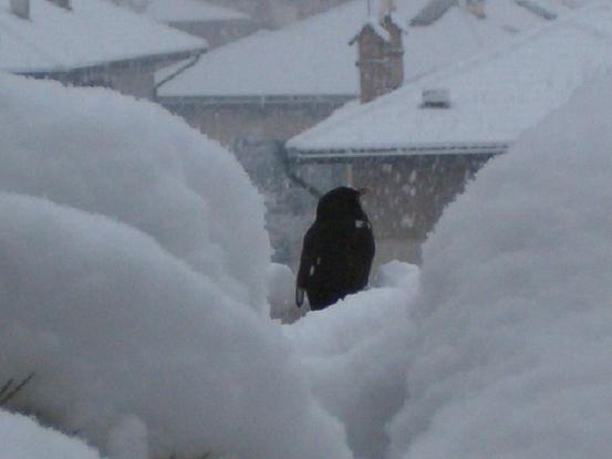 il-guardiano-della-neve-mini.jpg
