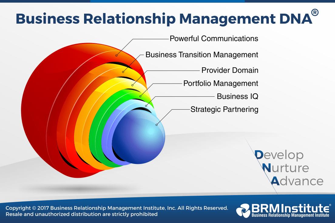 Business Relationship Management DNA™ BRM Institute