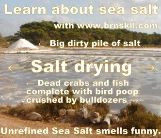 Learn about Unrefined Sea Salt with www.brnskll.com