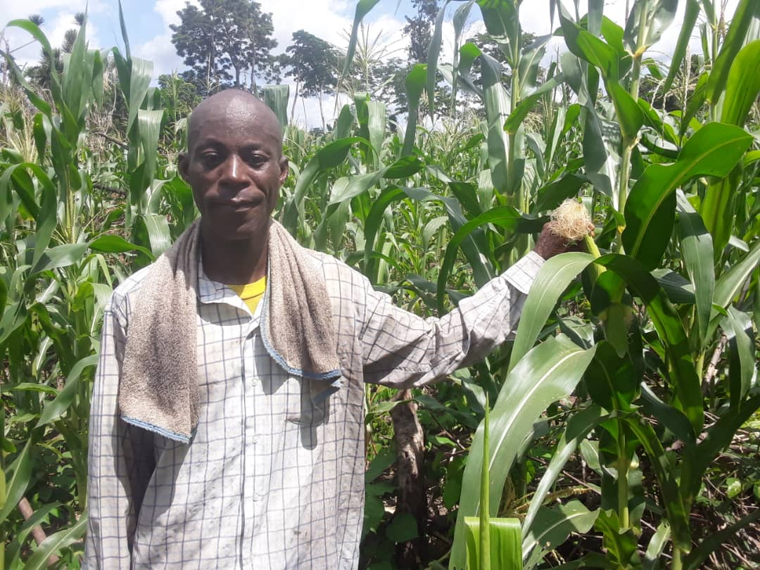Make Agric loans accessible to farmers-Kofi Adade To Government